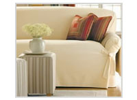 Upholstery Cleaning Schaumburg
